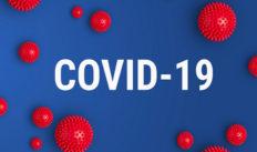 covid-19-port